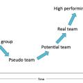 The Team Evolution Curve